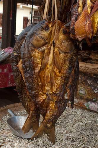 dried fish at a market on the road to Luang Prabang