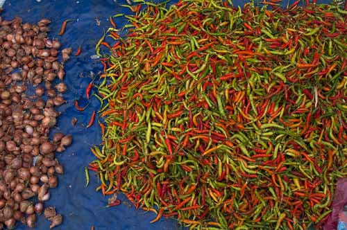 garlic and peppers in Luang Prabang market
