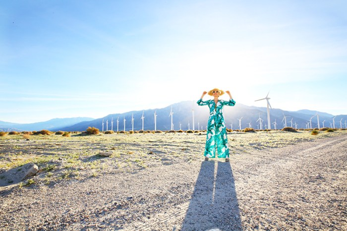 Palm Springs Windmills | Kelly Golightly