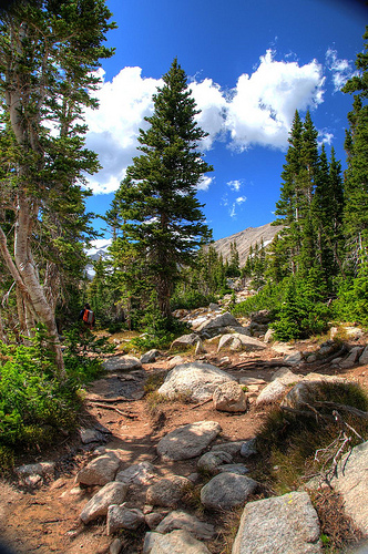 Mountain trail with boulders