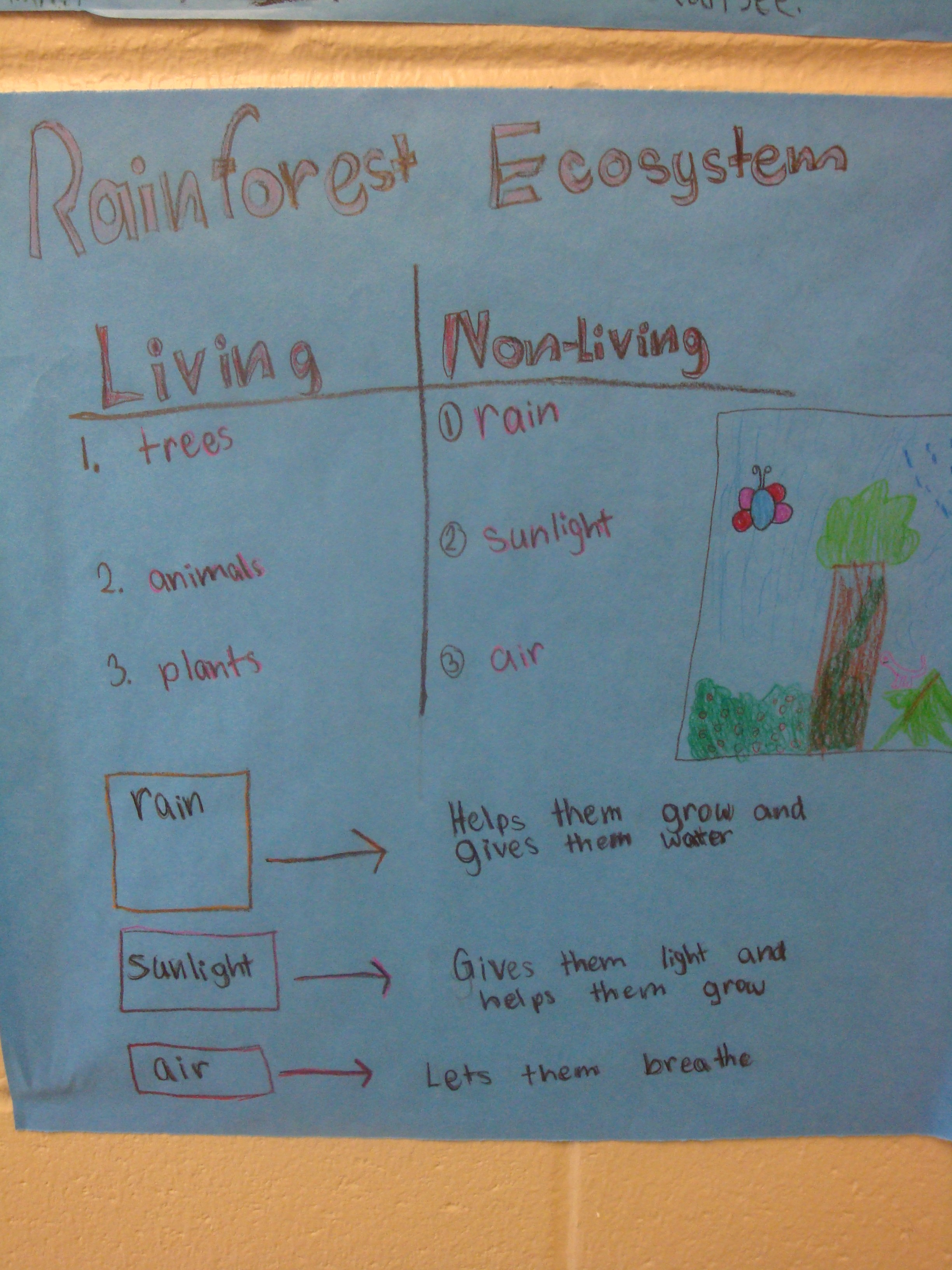 Living And Nonliving Parts Of Ecosystems