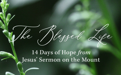 The Blessed Life: 14 Day Devotional Series