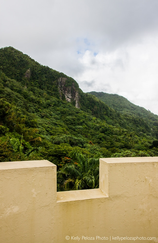 El Yunque National Forest, Puerto Rico | observation tower