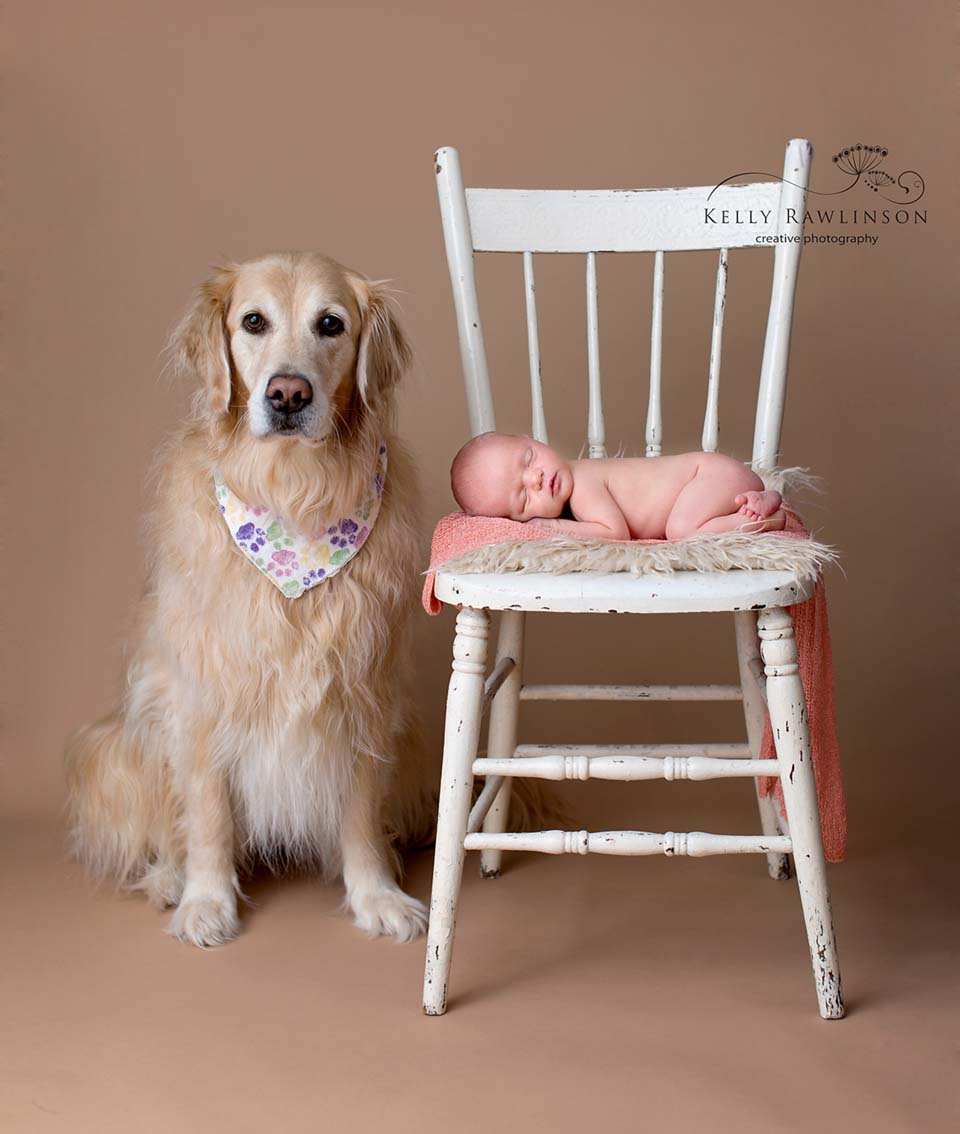 Newborn baby with pet dog, golden retriever