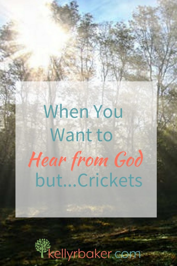 Don't you love it when God gives clear direction? But what if He's silent? Here are three actions when you're waiting to hear from God.