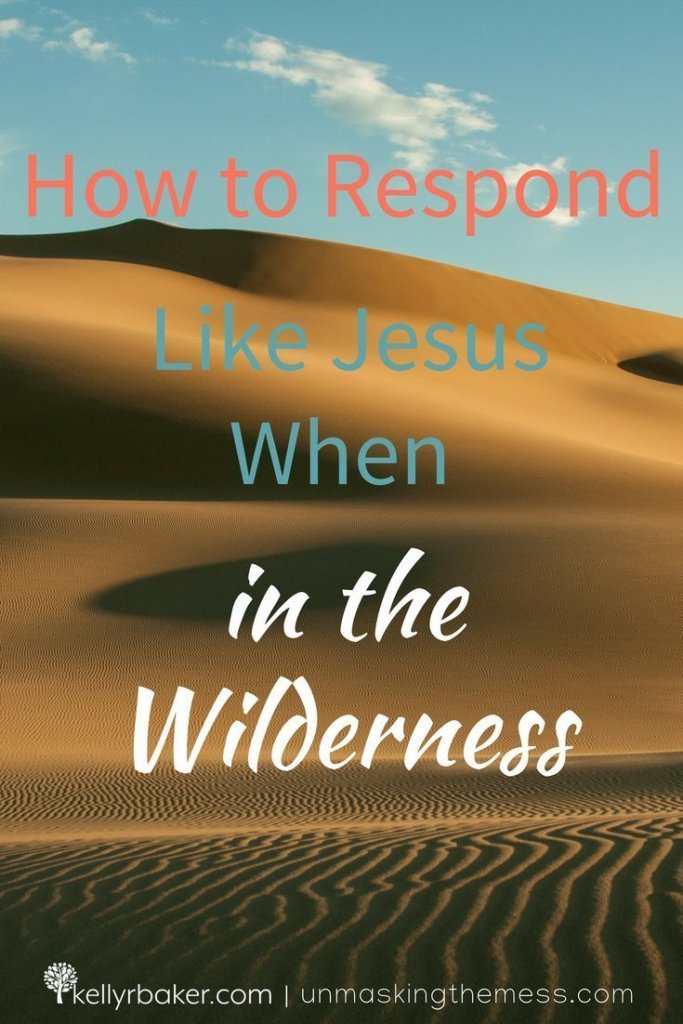 "Prior to beginning His ministry, ""Jesus was led up by the Spirit into the wilderness..."" (Matthew 4:1 ESV). Here's how to respond like He did. #ThrivingInChrist #wilderness #spiritualgrowth #dryseasons #spiritualseasons #Jesus #bible #biblicaltruths"