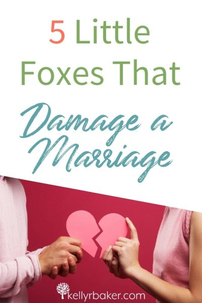 Here are five ways to eliminate the allegorical foxes that can spoil the vine in marriage and create extensive damage. #marriage #relationships #spiritualgrowth #thrive #biblicaltruth #husband #wife #marriagerelationship #songofsongs #foxesthatspoilthevine #foxes