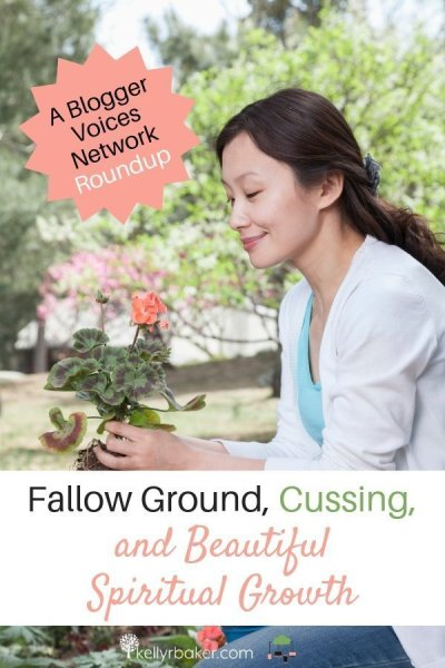Is my heart fallow ground? If I don't plant anything, I'm not going to see anything grow. Zero plus zero still equals zero. #BloggerVoicesNetwork #BVNetworkParty #ThrivingInChrist #blogger #wisdom #spiritualgrowth #Christian #blog #tongue #cursing #fallowground