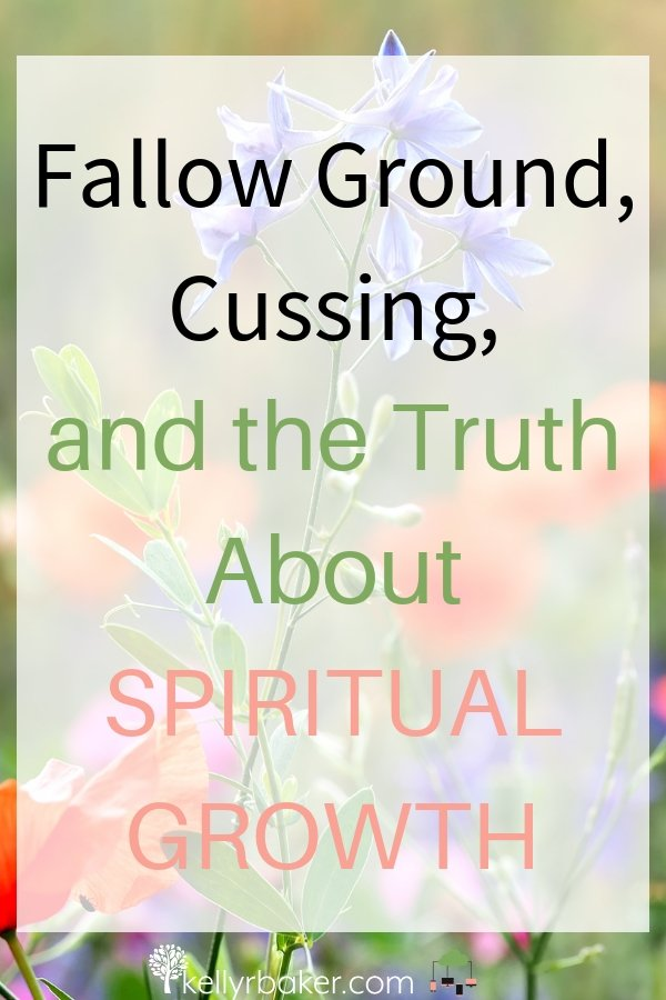In this post, I share my personal testimony on how God helped me tame my tongue. Included are the Best Posts on Evidence of Spiritual Growth from Members of the Blogger Voices Network #BloggerVoicesNetwork #BVNetworkParty #ThrivingInChrist #blogger #wisdom #spiritualgrowth #Christian #blog #tongue #cursing #fallowground