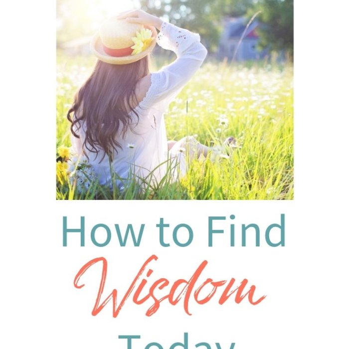 Daily Time™ Devotional: How to Find Wisdom Today