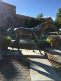There are paonted horse statues all around Ogden. I took pictures of some of the interesting ones that we walked past.