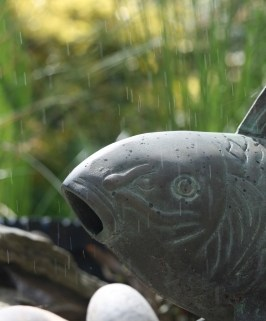 Pond Liners and Patio Stones: Productive Summer Backyard Activities for Family and Kids