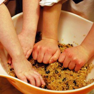 Bird Feeders and Bird Cakes – Great Activities for Children