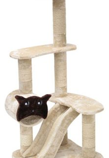 Cozy Cat Furniture Review