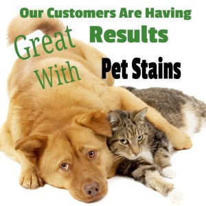Works great on Pet Stains