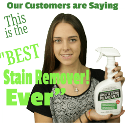 Best Stain Remover Ever