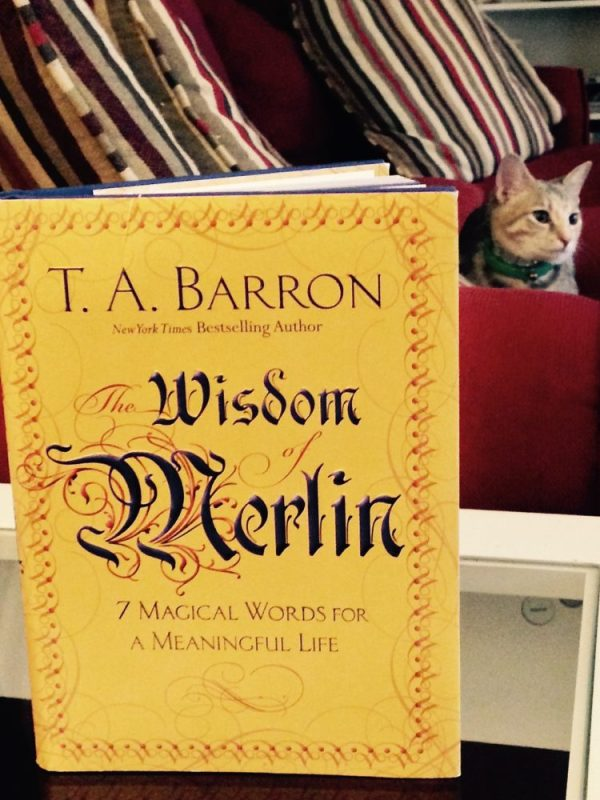 The Wisdom Of Merlin - Bringing Meaning To Your Life