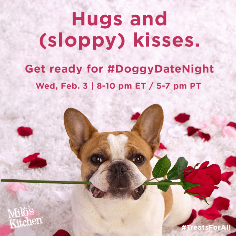 Hugs and (sloppy) kisses! You're invited to a #DoggyDateNight Twitter Party on Feb. 3