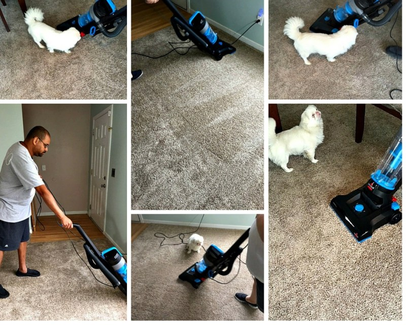 We have pets and teenagers, so my carpet and floors take a beating every day. My family thinks I'm nuts but they don't understand I need (no, not want- need) clean carpets. I love to see lines in my carpet. I have a new vacuum that I get to use TODAY....Bissell PowerForce Helix. Ohhh I can't wait!