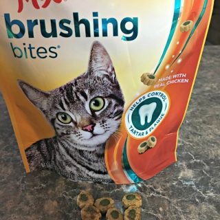 Meow Mix Cares For Our Cats Oral Health!