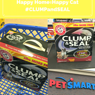 How To Get An Odor Free Home- Happy Home=Happy Cat #CLUMPandSeal