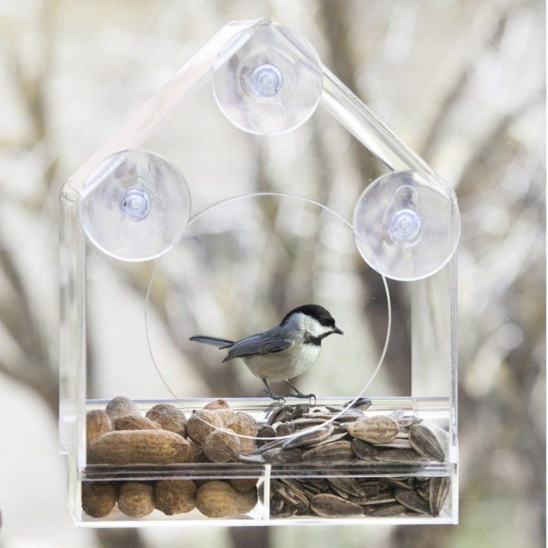 Birds-I-View feeder