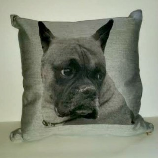 Custom Pet Pillows  from Cristions Make PURRfect Gift