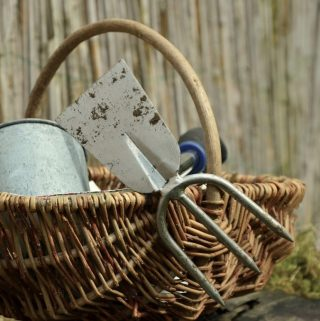Different Ways to Save on Your Gardening Tools Online