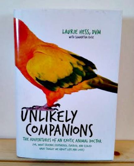 Unlikely companions book