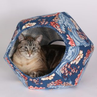 Simple Comfort For Your Precious Kitty