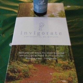 Invigorate Oils Car Diffuser Delivers Healing And Calm While Driving