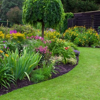 6 Tips and Tricks for Keeping Your Garden in Tip Top Shape during the Warmer Months