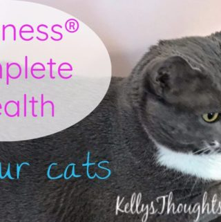 Healthy Pets Are Happy!  #HealthyMeetsHappy