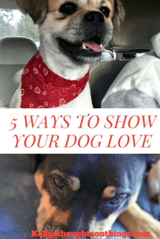 5 Ways To Show Your Dog LOVE! #TenderandTrue