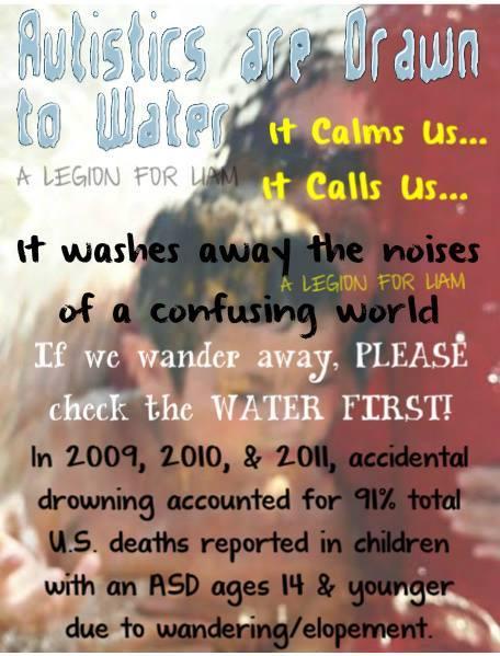 Water Watchdog Autism Mom