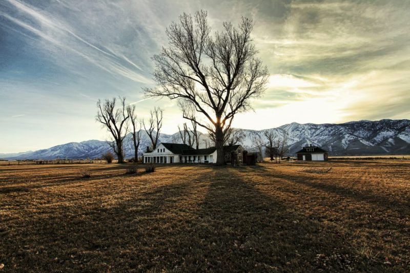 7 of the Top Things to Do and See in Carson Valley, Nevada