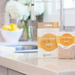 Stay Ant Free This Summer With A Non-Toxic Solution