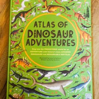 Dazzle Your Dino Lovers With This New Book
