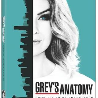 GREY'S ANATOMY: THE COMPLETE THIRTEENTH SEASON