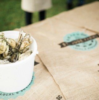 35th Annual Lowcountry Oyster Festival at Boone Hall Plantation