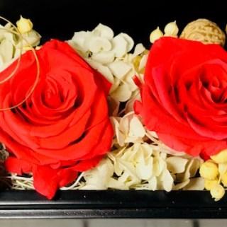 Ecuador's Chocolate and Roses