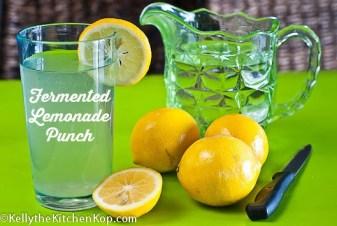fermented-lemonade-punch