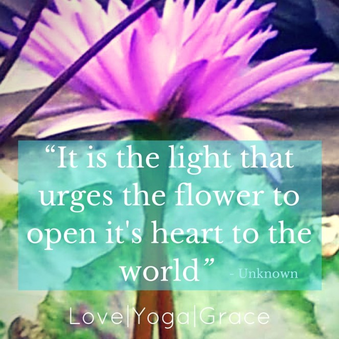 """It is the light that urges the flower to open it's heart to the world"""