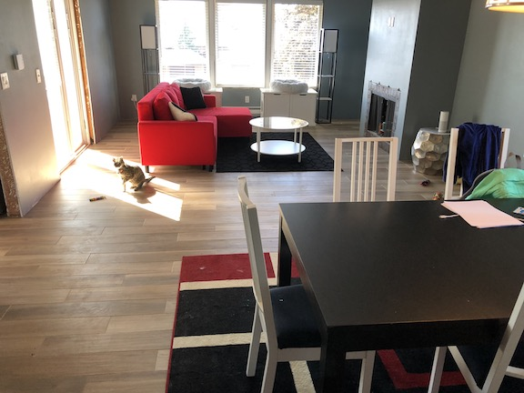 New floor with furniture