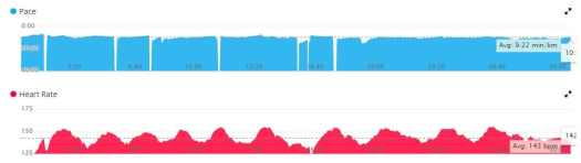 stats for pace and heart rate using garmin