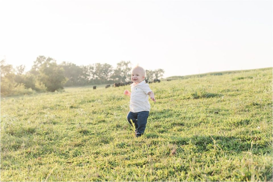 cow farm family session; one year photos