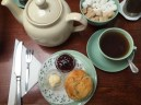 Fourteas tea, scone, clotted cream, jam (via K. Emmons)