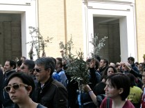 St. Peter's Square on Palm Sunday