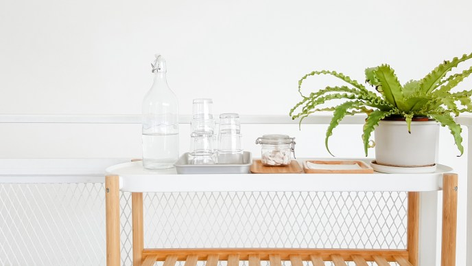 peaceful tidy scene of glass containers on a white table with a plant