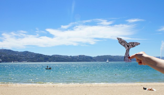 Wellington Harbour, Kelsey Montague Art Whale